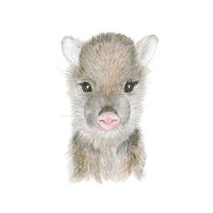 Baby Javelina Watercolor Print