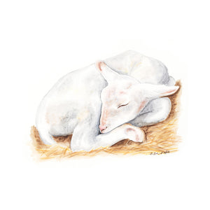Sleeping Lamb Animal Print