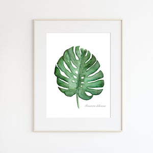 Monstera Palm Leaf Botanical Print