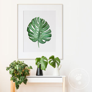 Monstera Tropical Leaf Wall Art