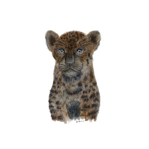 Black Panther Cub Illustration