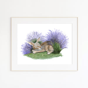Sleeping Nutbrown Hare in Lavender Watercolor