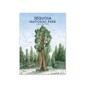 Sequoia National Park Travel Print