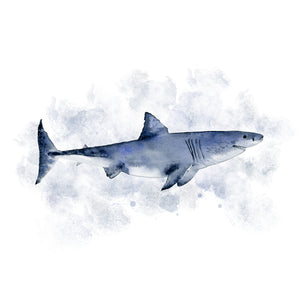 Shark Watercolor Print