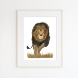Male Lion Pastel Painting