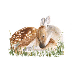Sleeping Deer Fawn Animal Print