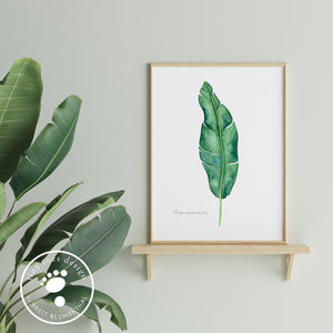 Banana Leaf Home Decor