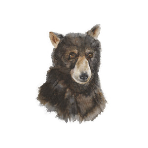 Bear Cub Portrait