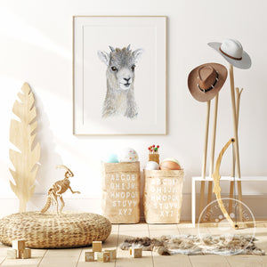 Baby Big Horn Sheep Playroom Print