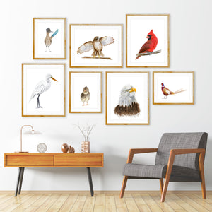 Bird Aviary Watercolor Prints