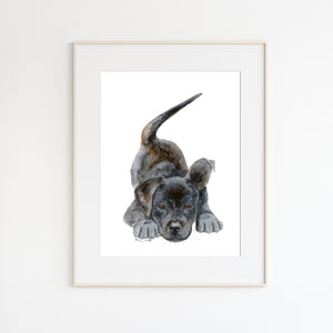 Black Lab Puppy Wall Art