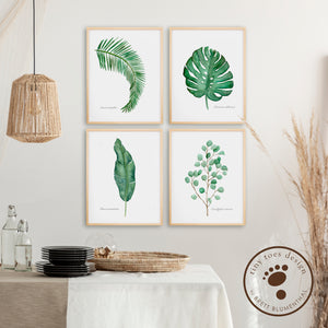 Botanical Watercolor Print Set