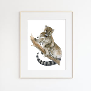Mom and Baby Coati Watercolor Print