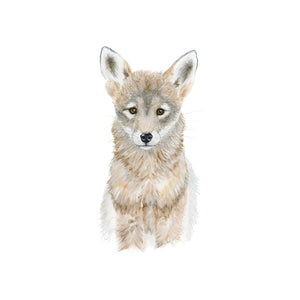 Baby Coyote Watercolor Print