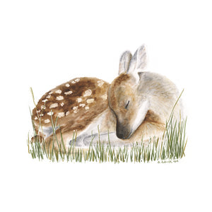 Sleeping Baby Deer Nursery Art