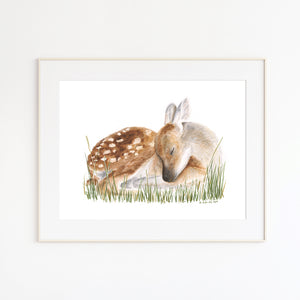 Fawn Watercolor Print