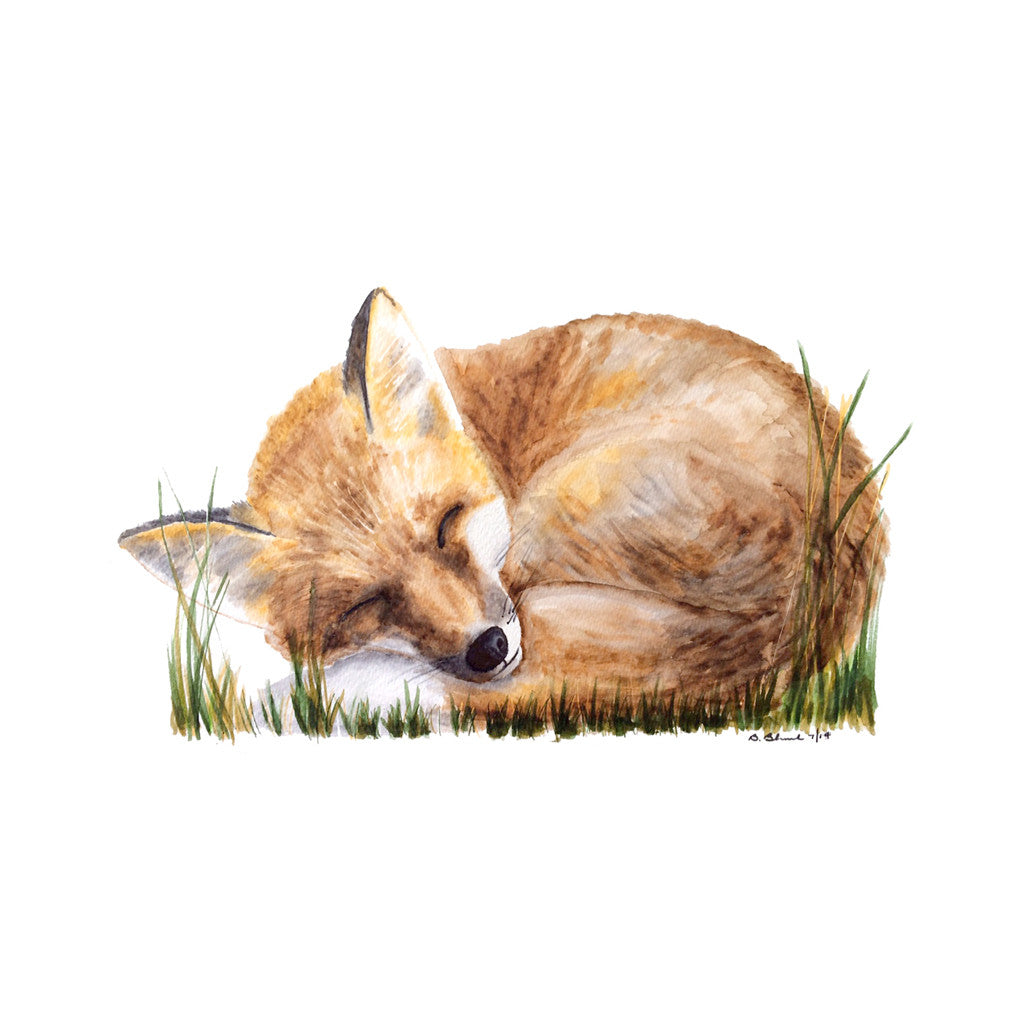 Sleeping Woodland Fox Nursery Art Tiny Toes Design