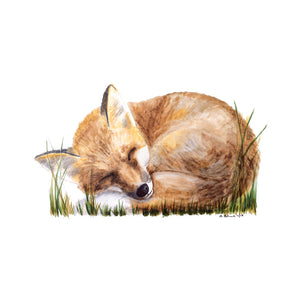Sleeping Fox Woodland Animal Print