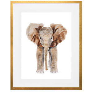 4 Framed Woodland Baby Animal Prints