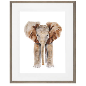 Framed Safari Baby Animal Print Set of 6