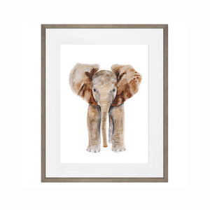 Framed Safari Baby Animal Print Set of 4