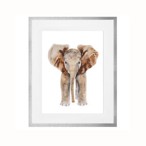 Framed Set of 4 Safari Baby Animal Prints