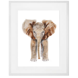 Framed Aussie Baby Animal Print Set of 6