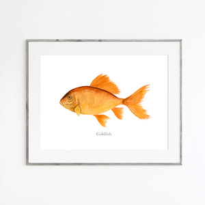 Goldfish Watercolor Print