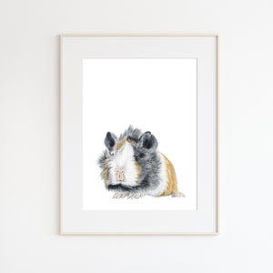 Guinea Pig Pet Portrait