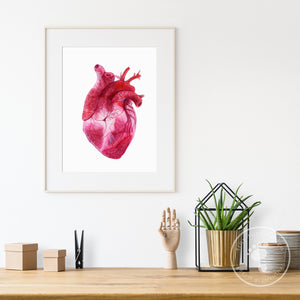 Anatomical Heart Wall Print