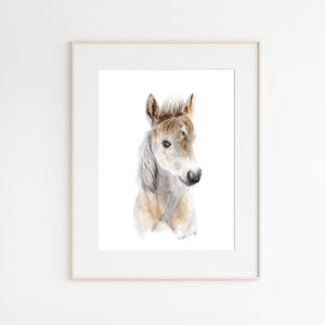 Baby Horse Watercolor Print