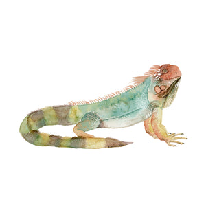 Iguana Nursery Decor