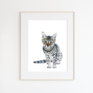 Kitten Watercolor Illustration