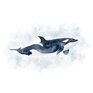 Orca Watercolor Nursery Art