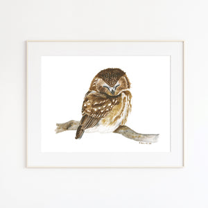 Sleeping Baby Owl Watercolor