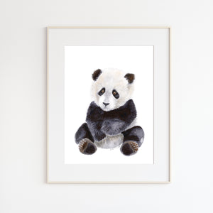 Baby Panda Bear Illustration
