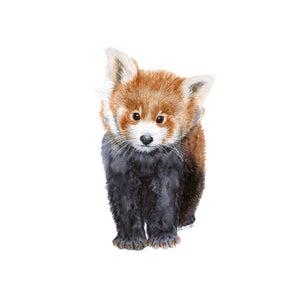 Baby Red Panda Nursery Art
