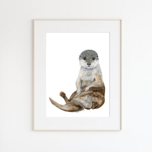 Baby Sea Otter Watercolor Illustration