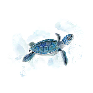 Sea Turtle Nursery Decor