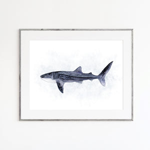 Whale Shark Watercolor Print
