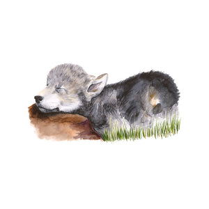 Sleeping Baby Wolf Watercolor