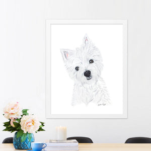 Yorkshire Terrier portrait in frame