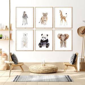 Zoo Animal Nursery Print Set