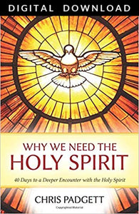 Why We Need The Holy Spirit - Digital Download