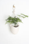 White Hanging Planter - Spora - Ceramic & Cotton Rope