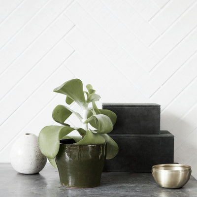 Clay Plant Pot - Earthy Green