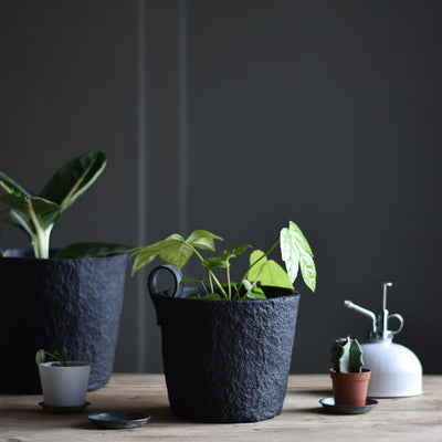 The Recycled Paper Plant Pot