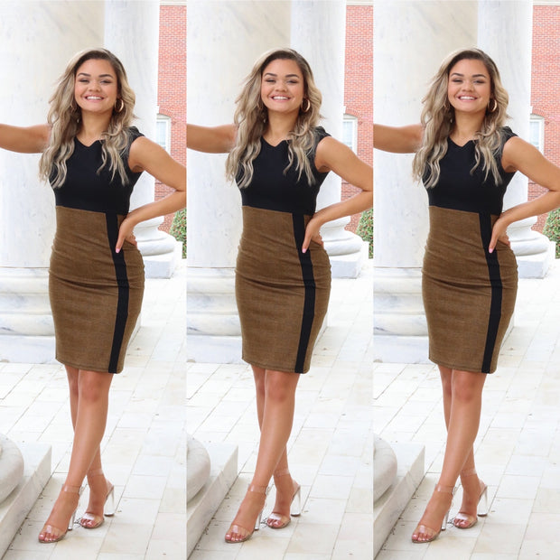 Black and brown sleeveless fitted dress