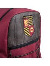 Load image into Gallery viewer, Harry Potter Quidditch Seeker Bungee Backpack