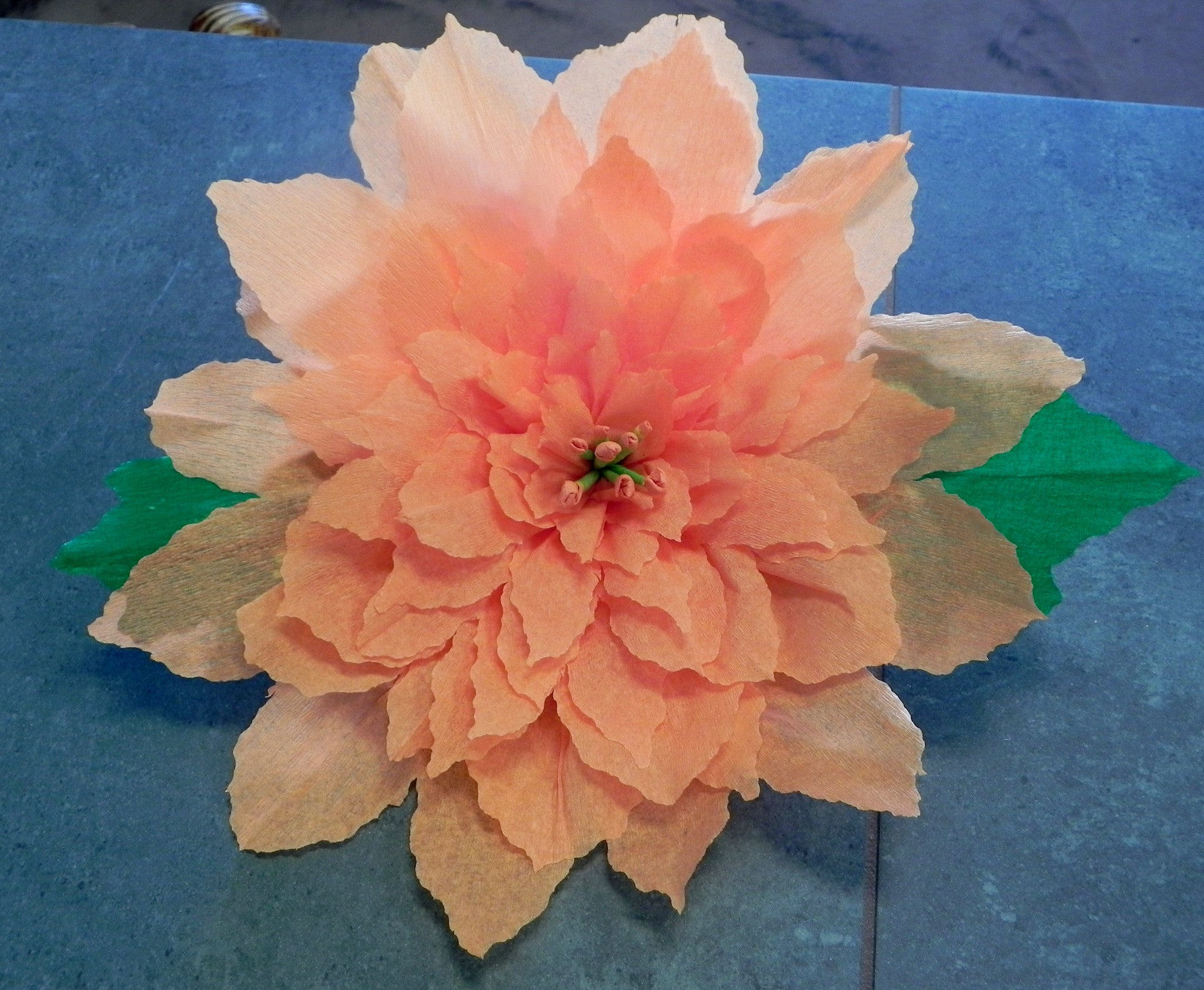 X Large Crepe Paper Flower Wall Hanging Poinsettia 13 Paper